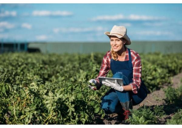Ismea, insediamento giovani in agricoltura